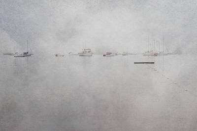 Misty Morning On The Coast - Acadia National Park - Maine Poster by Joann Vitali