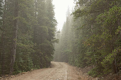 Poster featuring the photograph Misty Road by James BO Insogna