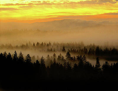Poster featuring the photograph Misty Sunrise by Ben Upham III