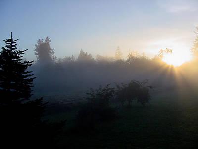 Misty Sunrise Poster by Shirley Heyn