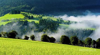 Misty Valley In Austria Poster