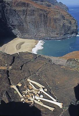 Mmm-117 Hawaiian Chieftans Final Resting Place Poster