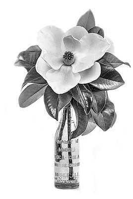 Mobile Magnolia Black And White Poster