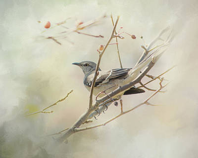 Mockingbird II Poster