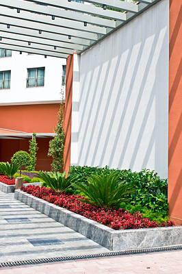 Modern Garden Poster