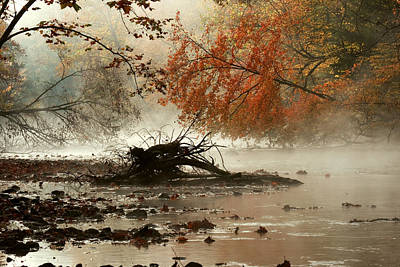 Mohican In Autumn Poster by Amanda Kiplinger