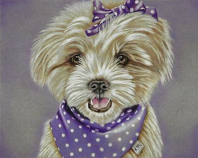 Molly The Maltese Poster by Karrie J Butler