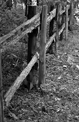 Poster featuring the photograph Momvisitfence-carterlane by Curtis J Neeley Jr