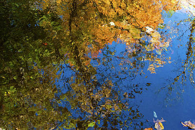 Poster featuring the photograph Monet's Autumn Pool by Lon Dittrick