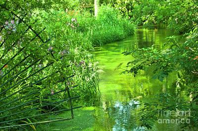 Monet's Green Garden Poster