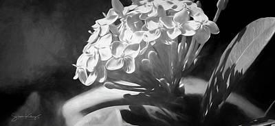 Monochrome Flora Poster