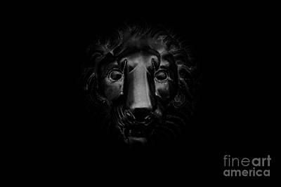 Monochrome Lion Poster by Floyd Menezes
