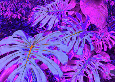 Monstera Leaves - In Violets Poster by Kerri Ligatich