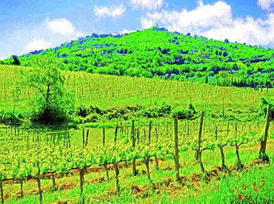 Montalcino Above A Vineyard Poster