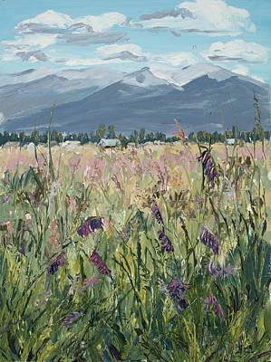 Montana Meadow Poster