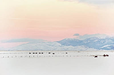 Montana Winter Sunset Sky Poster by Jennie Marie Schell