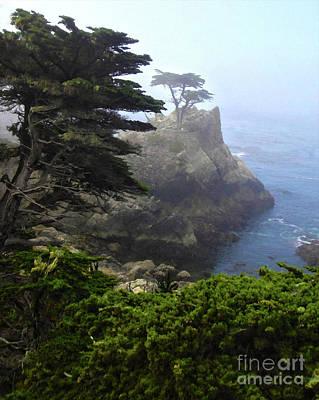 Monterey California - Lone Pine Poster