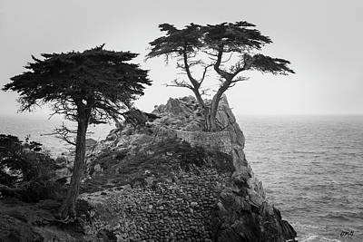 Monterey Peninsula II Bw Poster