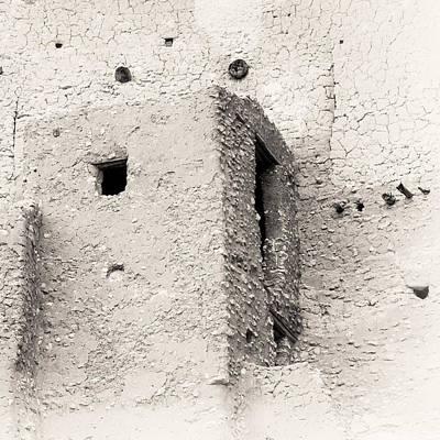 Montezuma Castle - Detail Poster