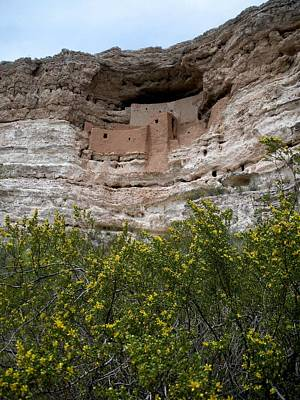 Montezuma Cliff Dwellings Poster