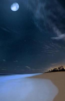 Moon Over Hobe Sound Beach Florida  Poster