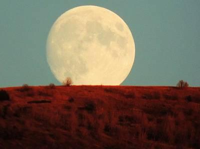 Moon Over Utah Poster by Charlotte Schafer