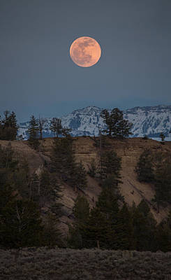 Moon Rising // Tower Junction, Yellowstone National Park Poster