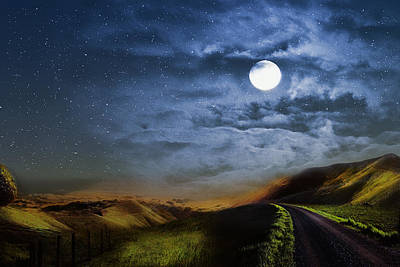 Moonlight Path Poster by Swank Photography