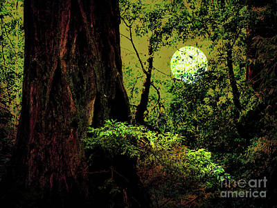 Moonlight Through The Old Redwood Forest . 7d5443 Poster by Wingsdomain Art and Photography
