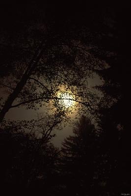 Moonlit Night - Elk Prairie Camp Poster