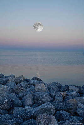 Poster featuring the photograph Moonlit Twilight by Shelly Stallings