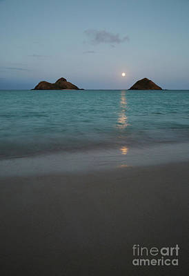 Moonrise At Lanikai Poster by Charmian Vistaunet