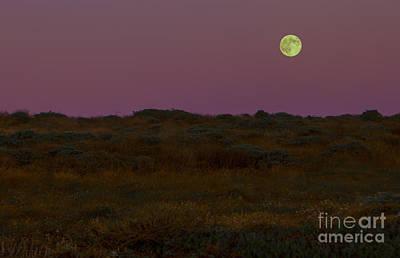 Moonrise In Bodega Bay Poster