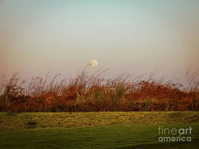 Moonscape Evening Shades Poster