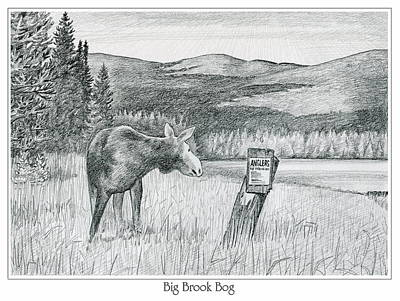 Moose At Big Brook Bog Poster