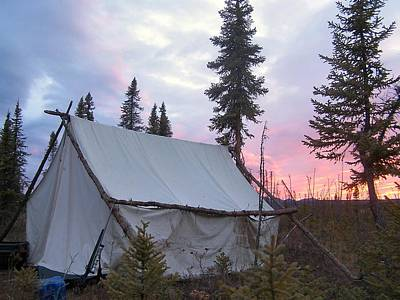 Poster featuring the photograph Moose Camp by Adam Owen