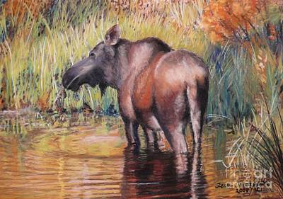 Poster featuring the pastel Moose In Alaska by Terri Thompson