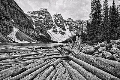 Moraine Lake Driftwood No 1 Poster by Stephen Stookey