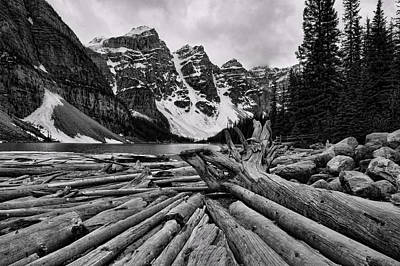 Moraine Lake Driftwood No 2 Poster by Stephen Stookey