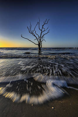 Morning At Botany Bay Plantation Poster by Rick Berk