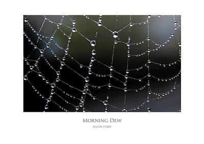 Poster featuring the digital art Morning Dew by Julian Perry