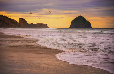 Poster featuring the photograph Morning Flight Over Cape Kiwanda by Darren White