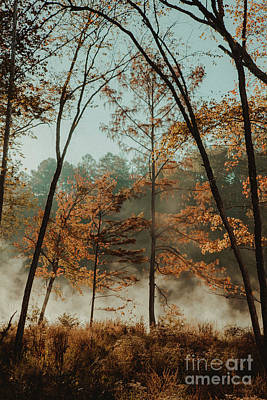 Poster featuring the photograph Morning Fog At The River by Iris Greenwell