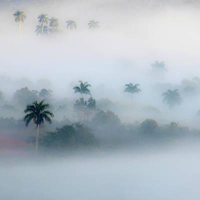 Morning Fog, Vinales Valley Poster