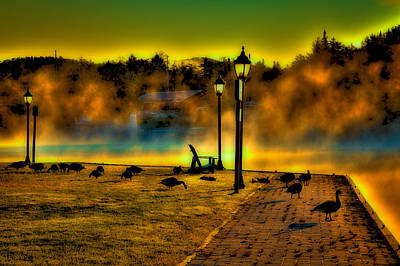 Morning Geese At Old Forge Pond Poster by David Patterson