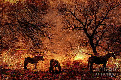 Morning Has Broken Poster by Callan Percy