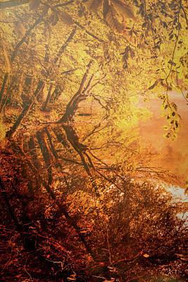 Morning Light Poster by Okan YILMAZ