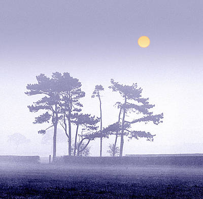 Morning Mist Poster by Peter OReilly