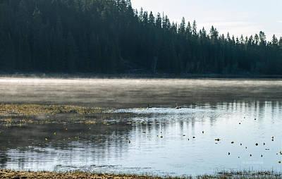 Morning On Wilson Lake  Poster