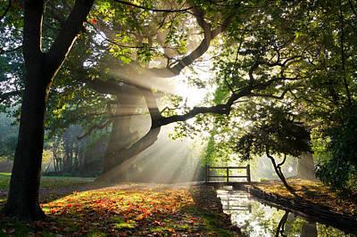 Morning Sunrise In Hampden Park Poster
